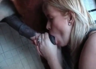 Blonde is being fucked by a stallion